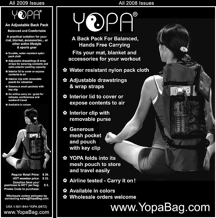 International Association of Yoga Therapists Journal - all 2008-2009 issues - yoga back pack.